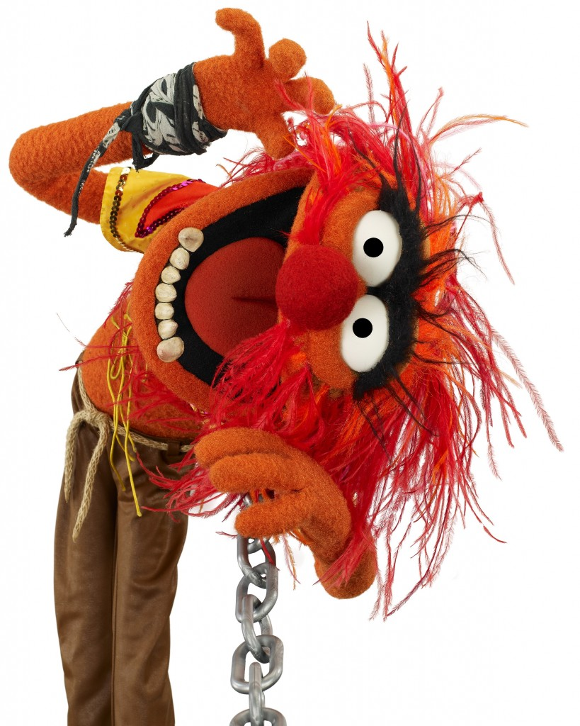 The-Muppets-Animal-819x1024