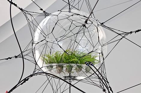 biospheres2