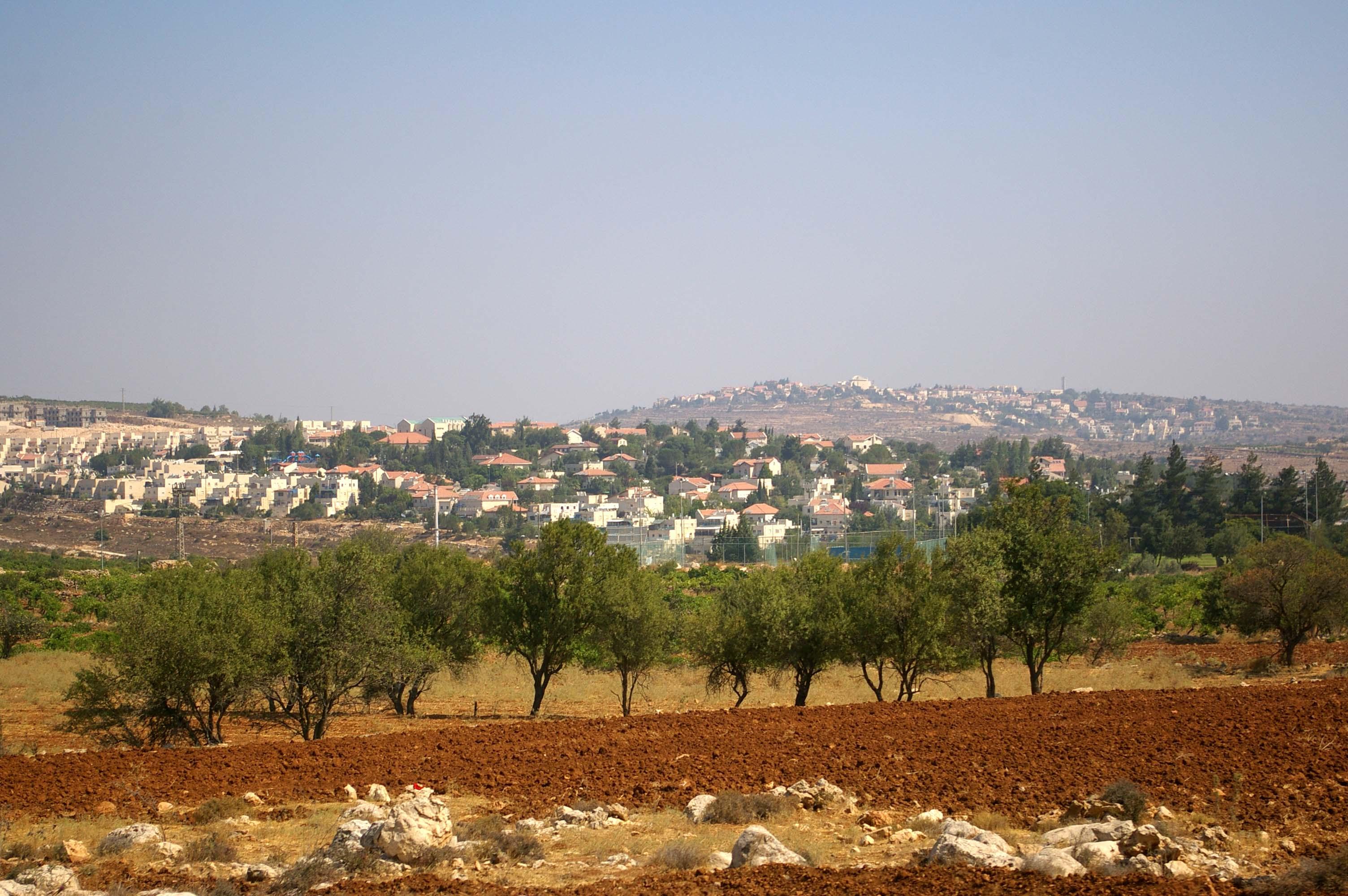 Hebron Region - photo by Leopold Lambert (3)